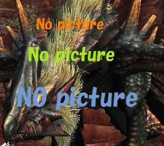 写真なし.jpg